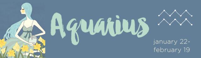 caratteristiche-acquario