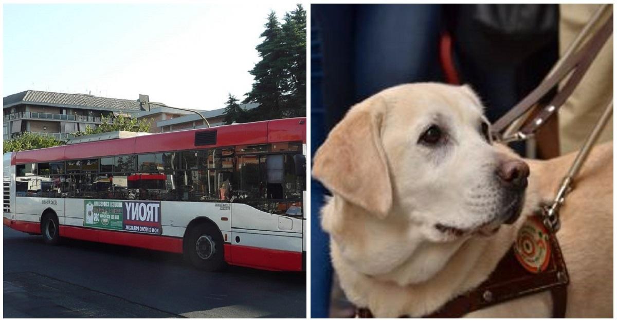 Linea Giaveno-Torino: ipovedente invitata a scendere con il cane