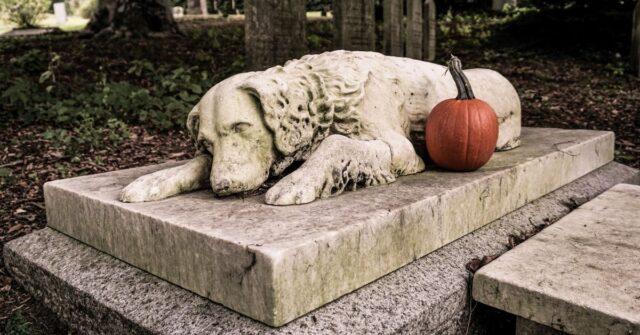 lombardia-cani-e-proprietari-seppelliti-insieme