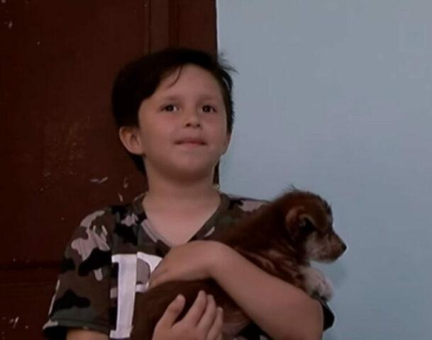 Nicolas-salva-la-vita-del-cagnolino-maltrattato