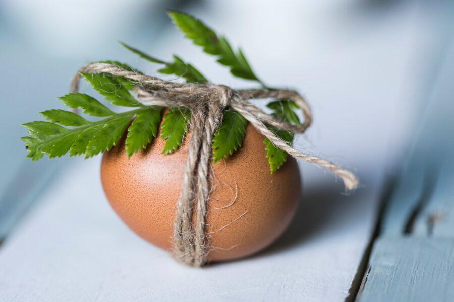 uovo-alla-coque