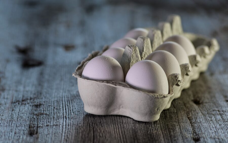 codice sul guscio delle uova