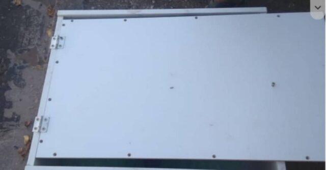La-cagnolina-abbandonata-sul-ciglio-della-strada 1