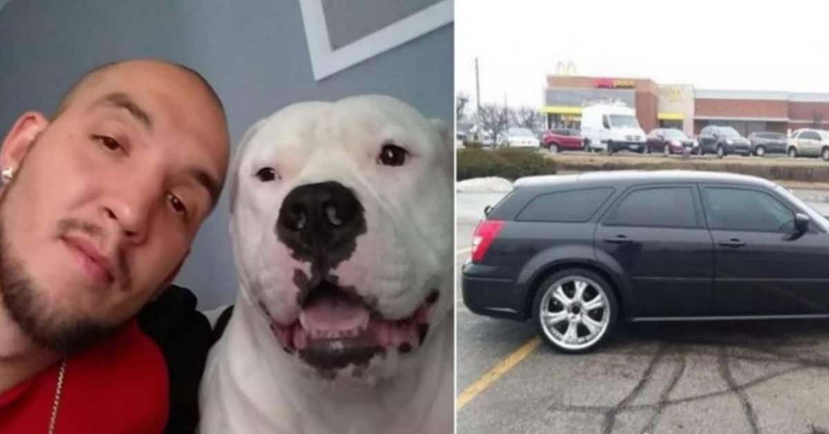 Vende la sua auto, per raccogliere i soldi per salvare il suo cane