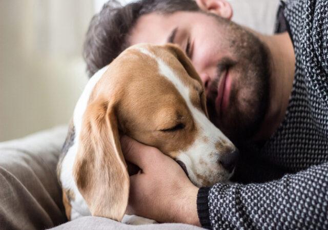 Avere-un-cane-ti-fa-vivere-di-piu