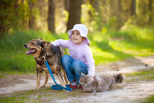 Ecco perchè fa così bene vivere con un cane