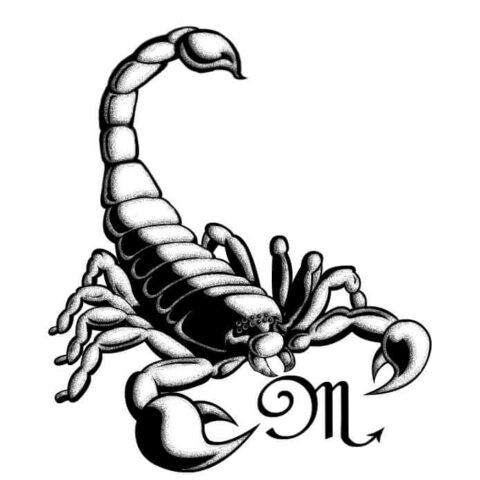 Scorpione3