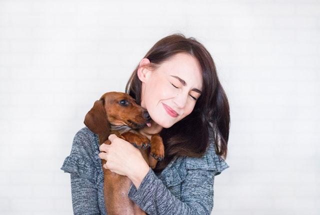 come-mantenere-cane-salute