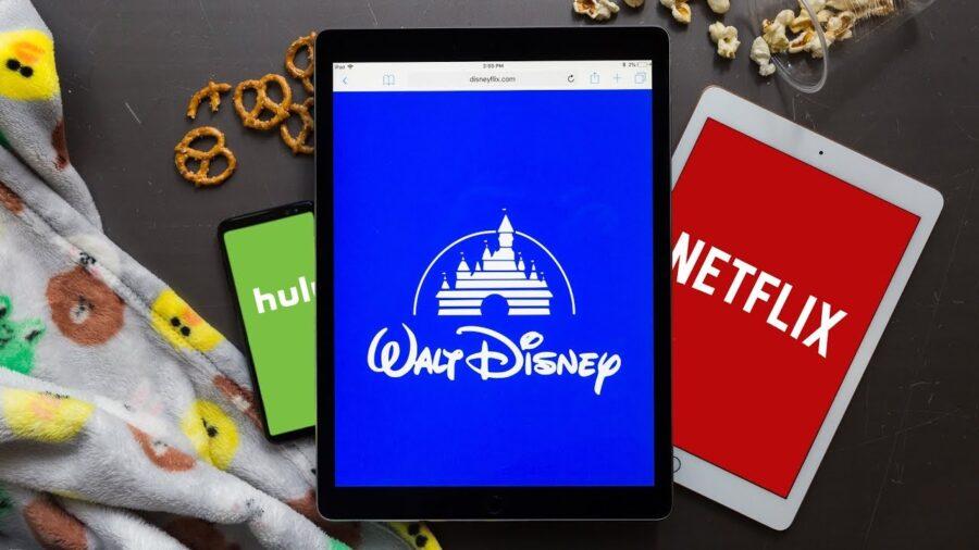 Disney streaming come funziona? bigodino