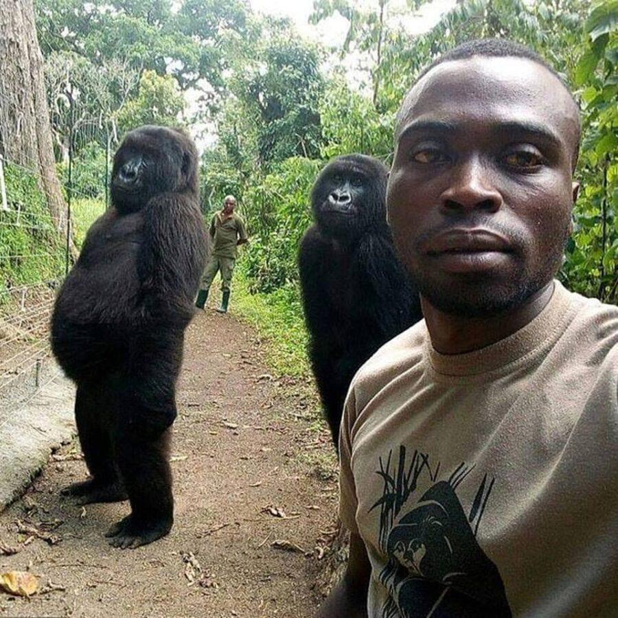 gorilla ranger selfie