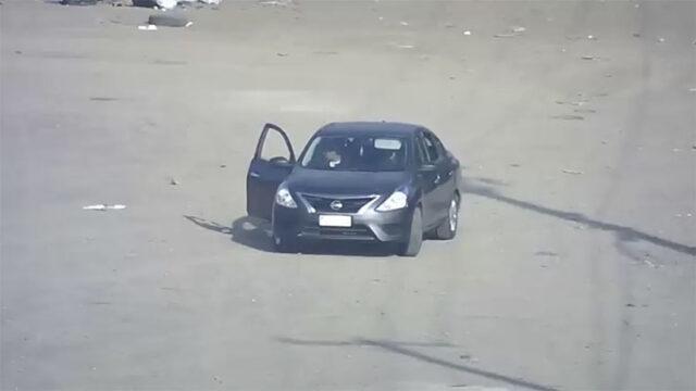 il-cane-abbandonato-in-un-parcheggio 2