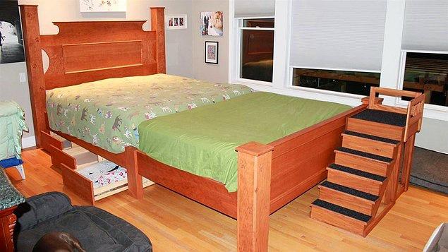 coppia-fa-costruire-un-letto-enorme-per-far-dormire-con-loro-i-cani 1