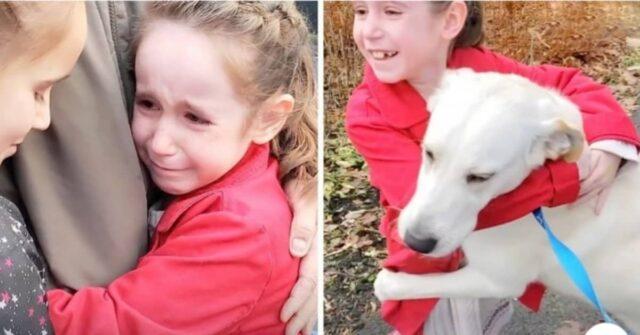 il-legame-speciale-tra-Rosie-e-le-bambine-che-le-hanno-salvato-la-vita
