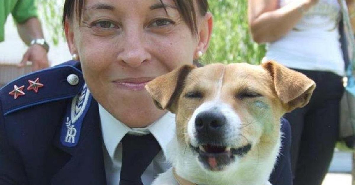 asti-solo-cani-abbandonati-nella-scuola-per-cani-poliziotto