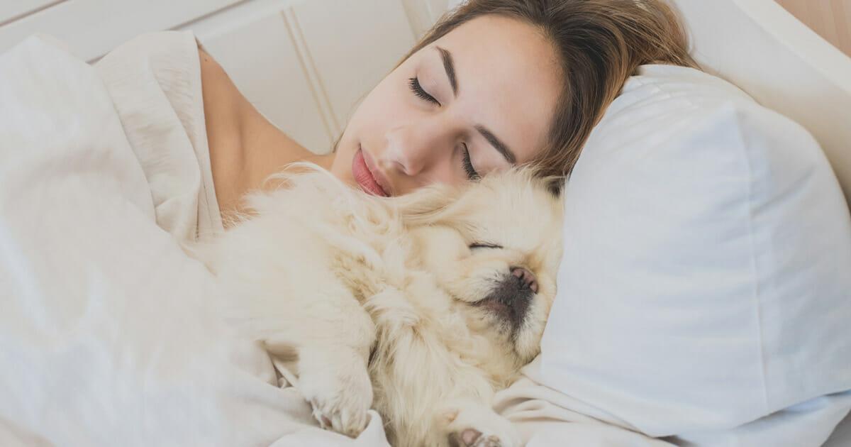le-donne-preferiscono-dormire-con-il-loro-cane