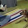 donna-prova-una-posizione-di-yoga-il-video-del-cane-che-le-mostra-come-si-fa