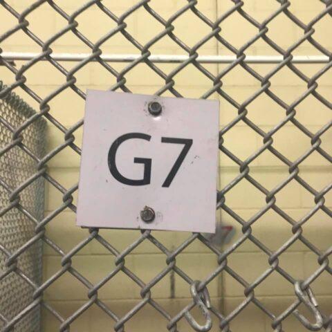 g7-gabbia