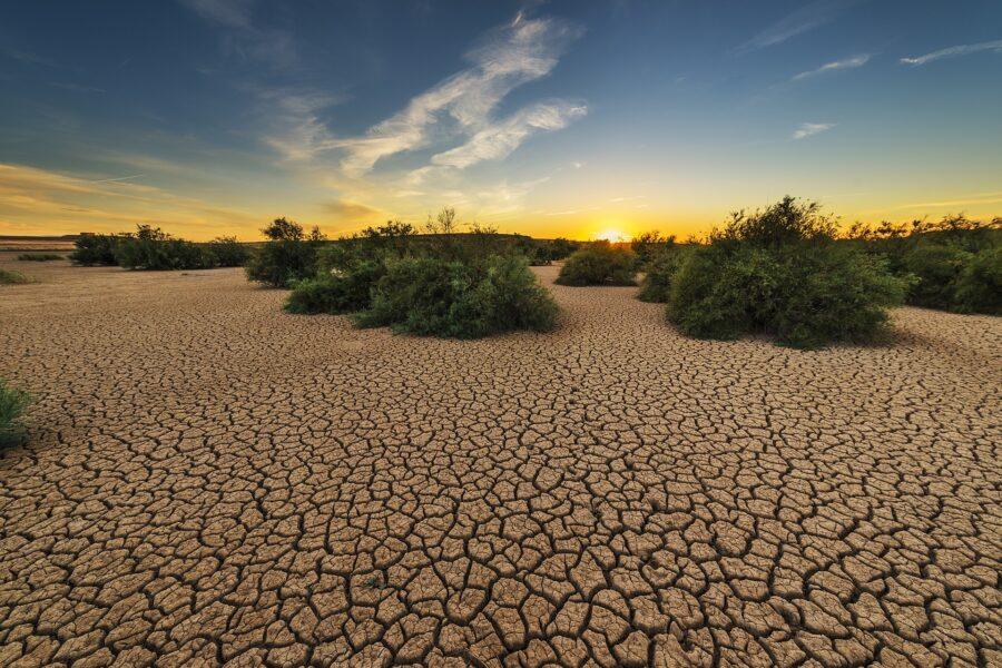 Giornata Mondiale dell'Ambiente.