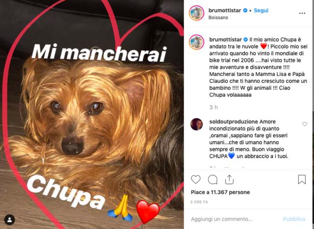 post-brumotti-chupa-cane