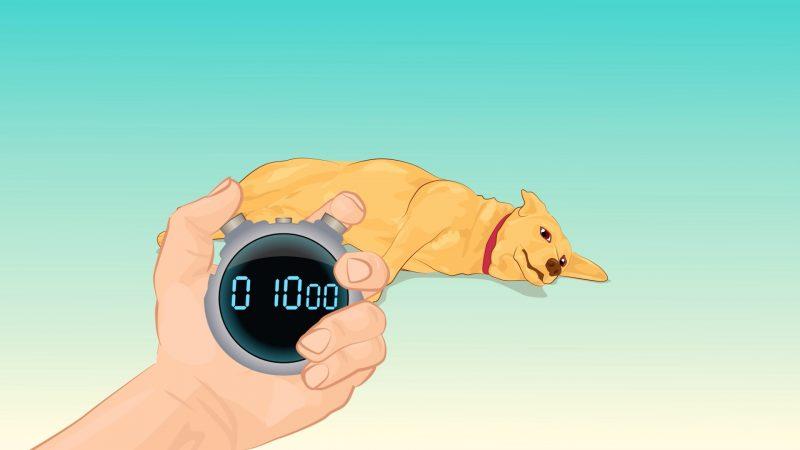 cane-cronometro