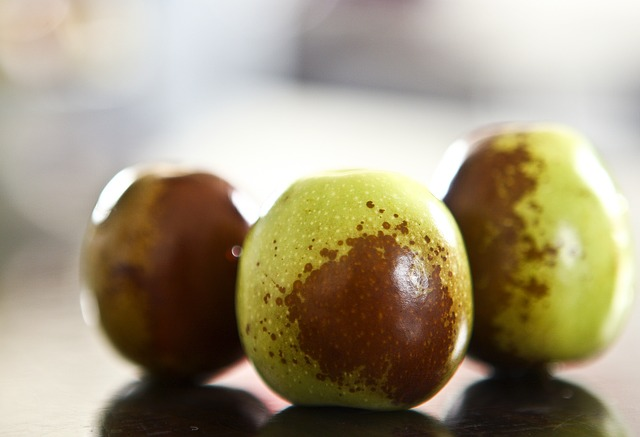 giuggiole-frutti