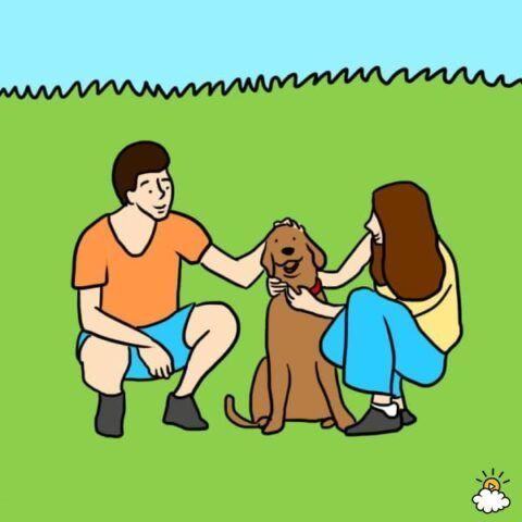 cane-abbassa-pressione