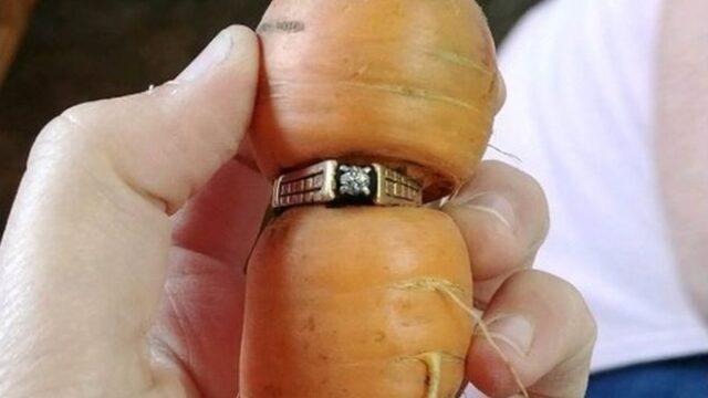 carota-anello