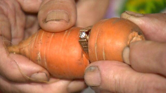 carota-anello-diamante