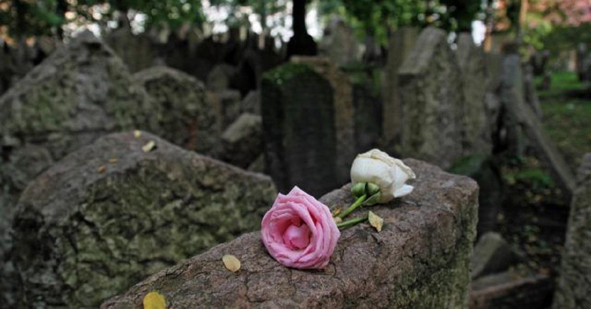 fiore-pietra