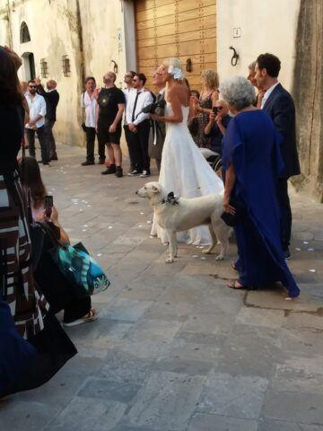 sposa-olivia