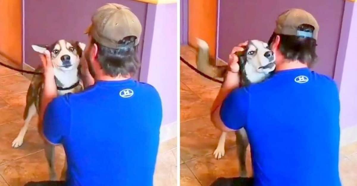 Jack rivede il suo amico umano dopo 4 lunghi anni