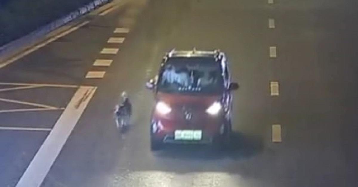 Il cane di Liuzhou, costretto a seguire a piedi una macchina