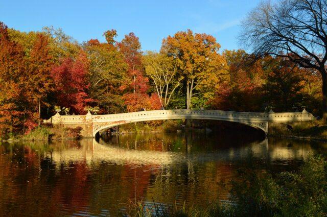 Autunno a New York: tra foliage e magia