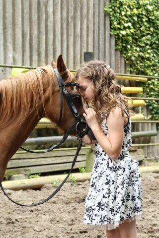 La pet therapy come cura dell'anima