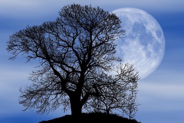 Luna piena e follia