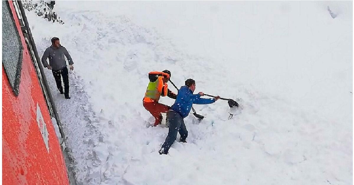Scavano a mano per salvare un animale sepolto