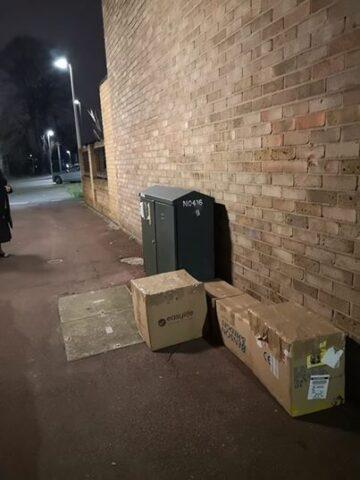 trovati-11-gattini-abbandonati-in-scatole-di-cartone