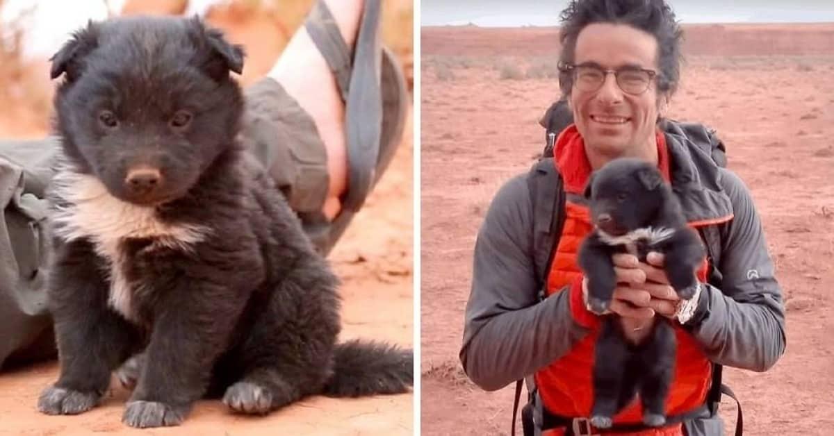 i-due-esploratori-salvano-il-cucciolo-abbandonato-e-lo-aiutano-a-trovare-una-nuova-famiglia