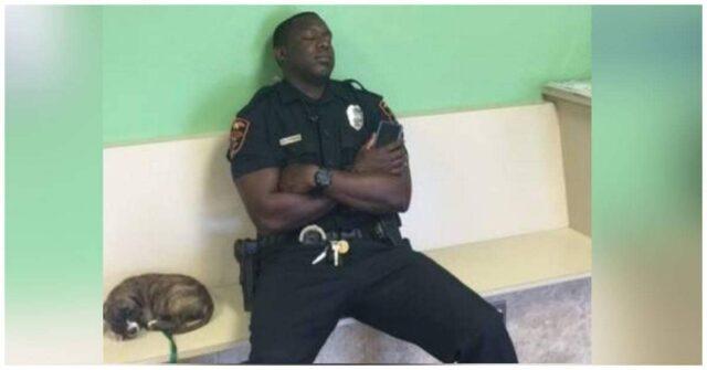 Il-gesto-gentile-del-poliziotto-per-il-cucciolo-abbandonato-che-gli-ha-salvato-la-vita