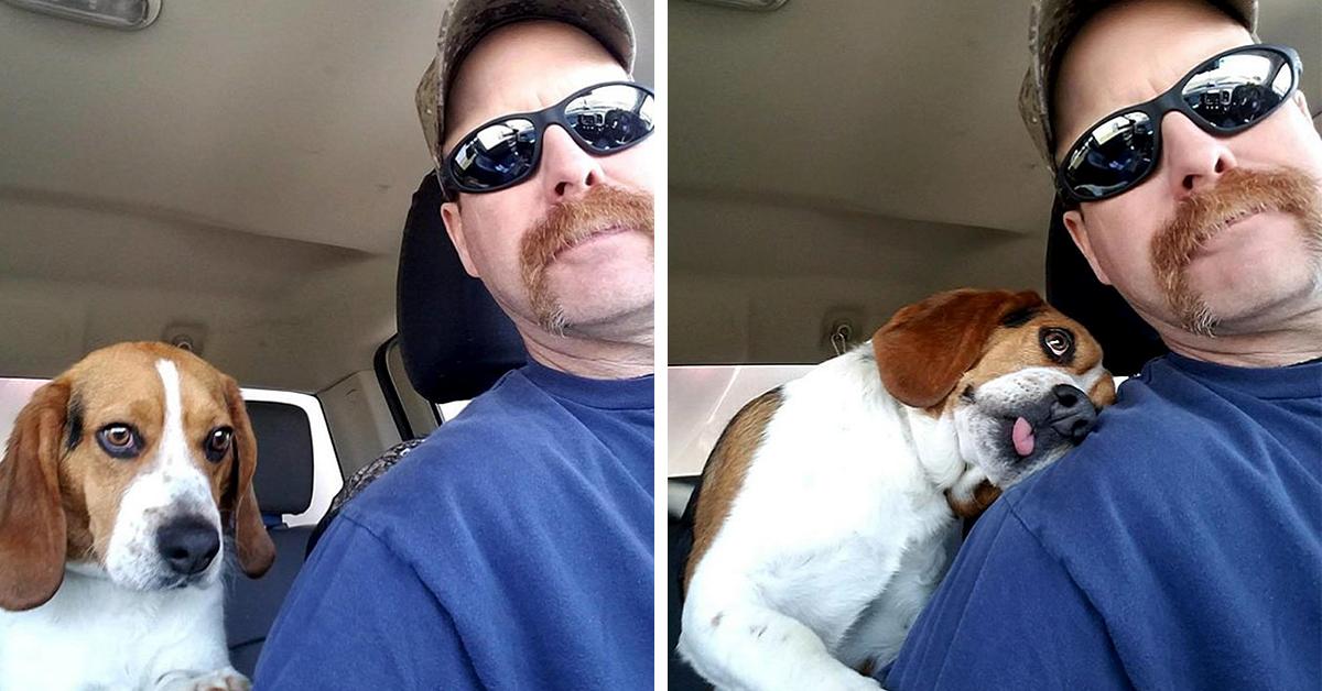 Beagle-uomo