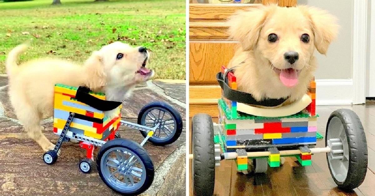 Dylan-costruisce-la-sedia-a-rotelle-con-i-Lego-per-la-piccola-Gracie