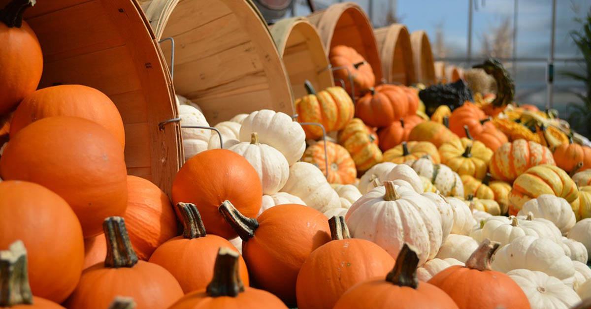 I prodotti alla zucca per un autunno all'insegna della bellezza