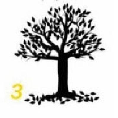albero-3