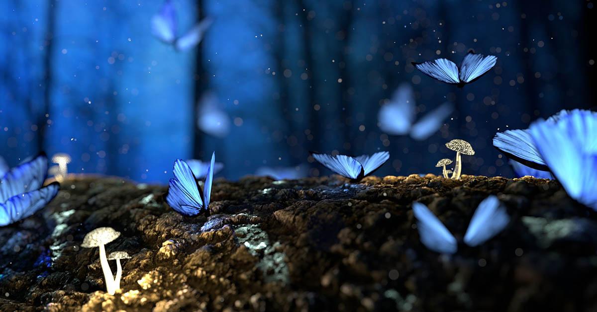 Lettera alla (mia) farfalla blu