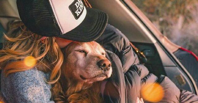 donna-cane