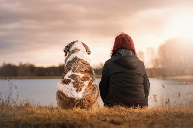 Io e il mio cane: quando l'amore è per sempre