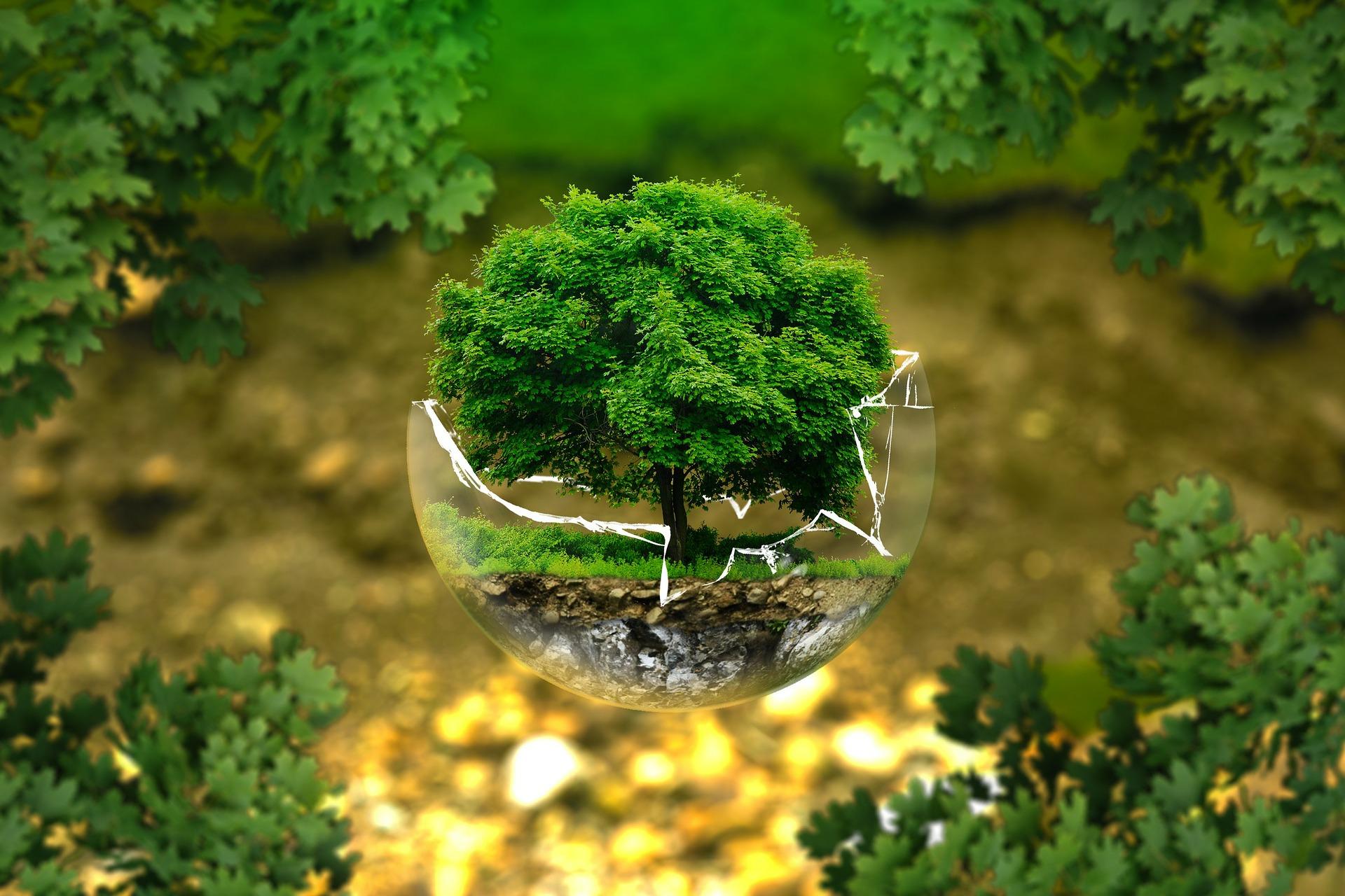 impronta ambientale