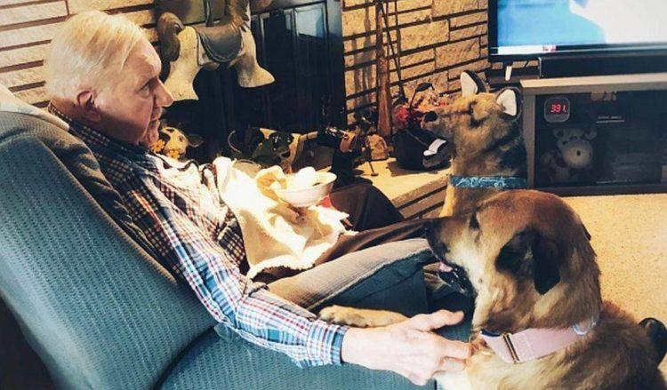 Un cane va a trovare il suo proprietario malato di Alzheimer