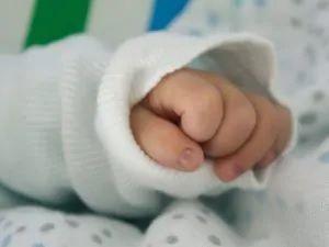 bobus bebè