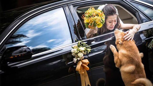 macchina-matrimonio